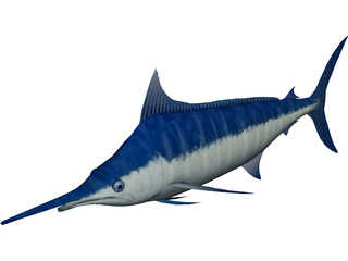 Marlin Blue 3D Model