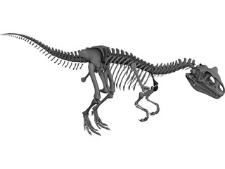 Allosaurus Skeleton 3D Model