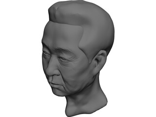 Old Chinaman Head 3D Model
