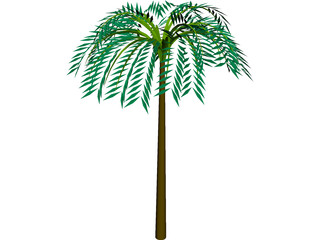 Tree Palm Tropical 3D Model