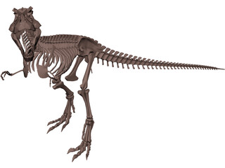 Dinosaur Skeleton 3D Model