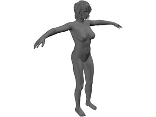 Female Anatomy Complete 3D Model