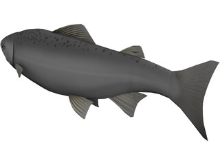 Happy Fish 3D Model