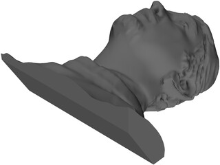 Face Human Digitalized 3D Model