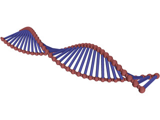 DNA Double Helix 3D Model