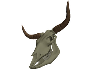 Cow Scull 3D Model