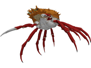 Crab (Maia Squinado) 3D Model