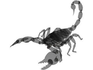 Scorpion (Arachnid Scorpionida) 3D Model