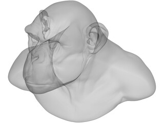 Chimp Head 3D Model